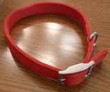 New Top Paw Red Dog Collar in Yorkville, Illinois